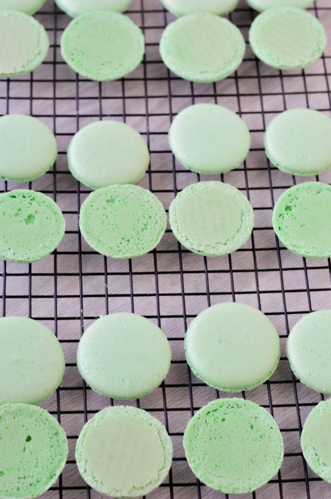 Margarita Macaron shells baked