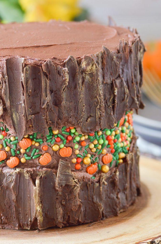 fall fault line cake with chocolate bark up close
