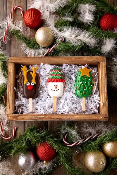 christmas cakesicles in box
