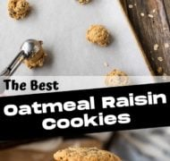 oatmeal raisin cookie pin